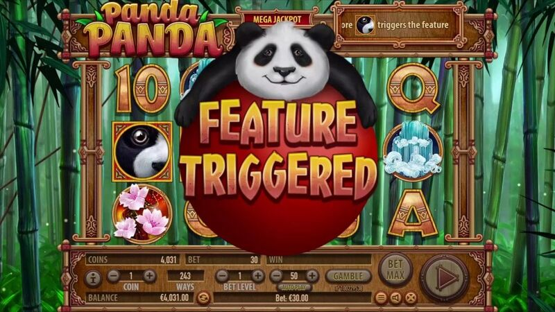 Panda Panda Habanero